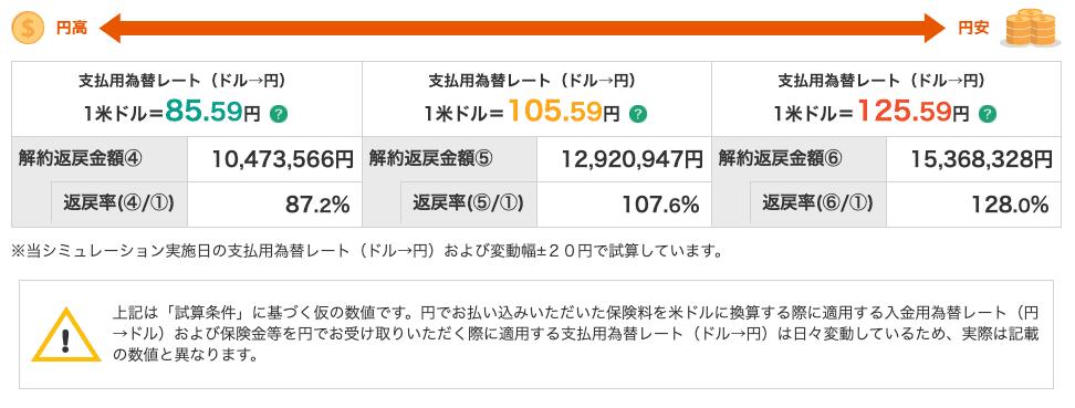 為替リスクによる円高